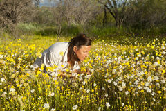 Woman in Field of Wildflowers Stock Images