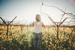 Woman in field of wildflowers  Royalty Free Stock Photos