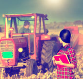 Woman in the field Royalty Free Stock Photos