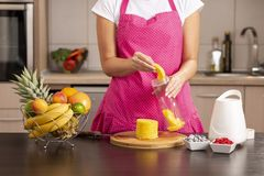 Woman filling the blender bowl with fresh pineapple royalty free stock image