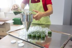 Woman filling wheatgrass smoothie in glasses stock photos