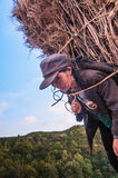 Woman with firewood Stock Photography