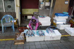 Woman at fish market Busan Royalty Free Stock Photography