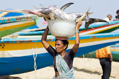 Woman with fishes at the fish market Stock Photography