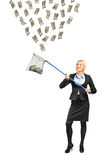 Woman with a fishing net trying to catch money Royalty Free Stock Photography