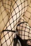 Woman in fishnet stockings. Stock Images