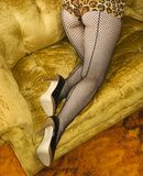 Woman in fishnet stockings. Stock Image