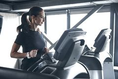 Woman Fitness. Beautiful young woman while training in the gym royalty free stock images