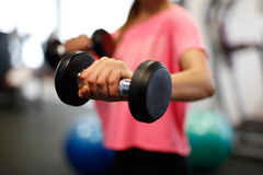 Woman at the fitness gym exercising. Woman at sport fitness gym weight training for beauty body. Fitness girls with dumbbells Royalty Free Stock Images