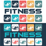 Woman of fitness silhouette character flat design icon  Royalty Free Stock Image