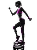 Woman fitness stepper weights exercises silhouette Royalty Free Stock Photo