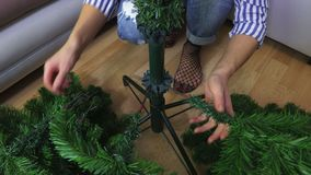 Woman fixing Christmas tree. In room stock video