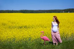 Woman with flamingo royalty free stock photos