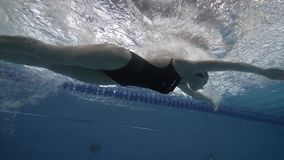 Woman floating butterfly stroke in swimming pool underwater view. Close up female swimmer swims butterfly stroke on swimming path in blue waterpool 60 fps stock video footage
