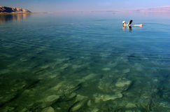Woman floating on  the Dead Sea Stock Images