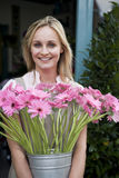 Woman florist or gardener holding a large pot of pink asters Royalty Free Stock Photos