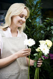 Woman florist or gardener holding some white flowers Royalty Free Stock Images