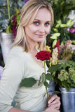 Woman in florist's shop, holding a single red rose Royalty Free Stock Photo