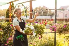 Happy gardener with plant Stock Image