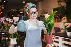Woman florist  watering plants with pulvelizer in flower shop Royalty Free Stock Photo