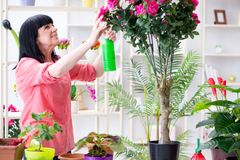 The woman florist working in the flower shop Royalty Free Stock Photos