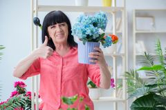 The woman florist working in the flower shop Royalty Free Stock Images