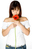Woman And Flower. An attractive young Asian woman in white top holding a red flower on white background Royalty Free Stock Image