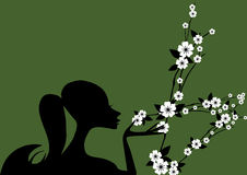 Woman and flower. Elegant woman silhouette and flower Royalty Free Stock Images