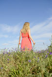 Woman on flower meadow Stock Photos