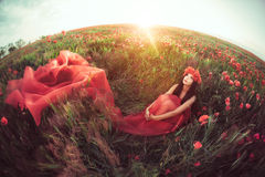 Woman in flower poppy field in summer. Goorgeous woman sitting on flower poppy field in summer on sunset. Attractive mixed race asian caucasian girl in red dress Stock Image