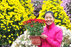 woman with flower potting Stock Photography
