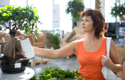 Woman in flower shop. Half body portrait of middle aged woman looking at plants in flower shop Stock Image