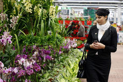 Woman in flower shop royalty free stock image