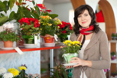 Woman  in flower shop Stock Photo