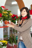 Woman in  flower shop Royalty Free Stock Photo