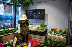 Woman in a flower shop royalty free stock photo