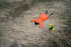 Woman and flowers. Woman lie at field of dry herbage near group of yellow flowers (narcissis Stock Photos