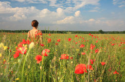 Woman and flowers. Woman, poppies and azure sky stock photo