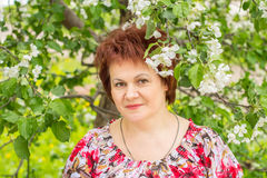 Woman in flowers of Apple Stock Photography