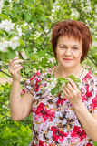 Woman in flowers of Apple Stock Images