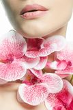 Woman and Flowers. Beauty Portrait stock photo
