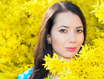 Woman in flowers Forsythia Stock Photography
