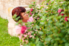 Woman with flowers in her garden Stock Photos