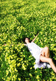 Woman lying in a field of flowers Stock Photo