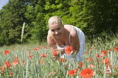 Woman in flowery meadow. Stock Photography