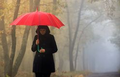 Woman and foggy forest Stock Photography