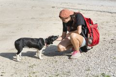 Woman fondle a stray dog. Woman fondle a scared stray dog stock image
