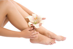 Woman Foot And Hand With Flower Royalty Free Stock Photography
