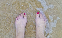 Woman Foot in the Beach Stock Images