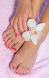 Woman foot with orchid. Woman foot in beauty treatment with orchid Royalty Free Stock Photography